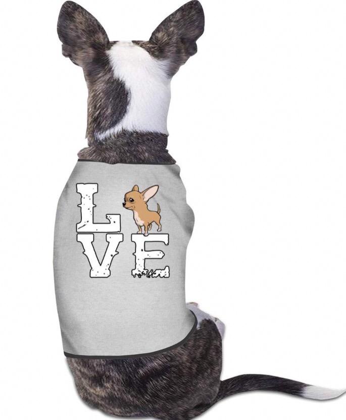 Chihuahua clothing 8