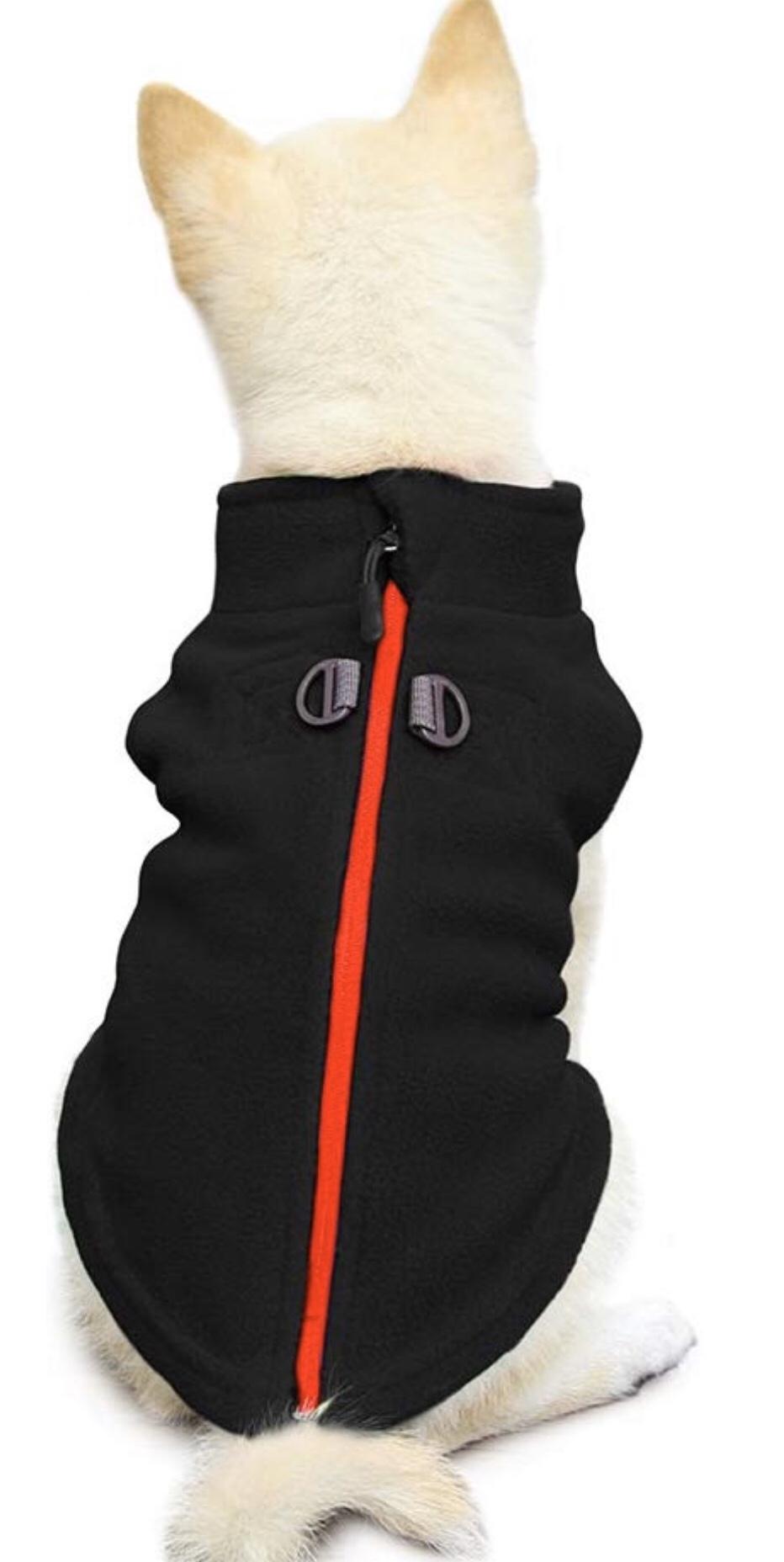 Chihuahua jackets 10
