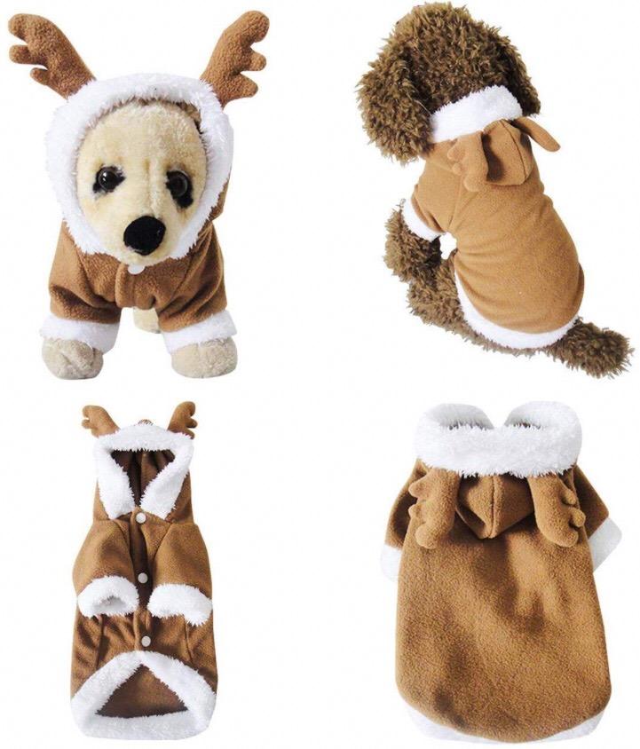 Chihuahua costumes 5